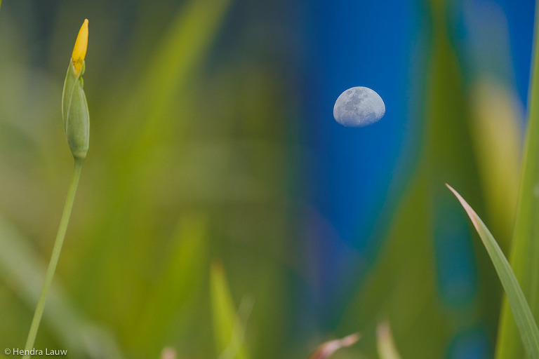 Moon photography by Hendra Lauw